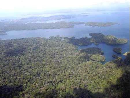La zone protégée de San Lorenzo - Copyright Projet Ibisca - Tous droits réservés
