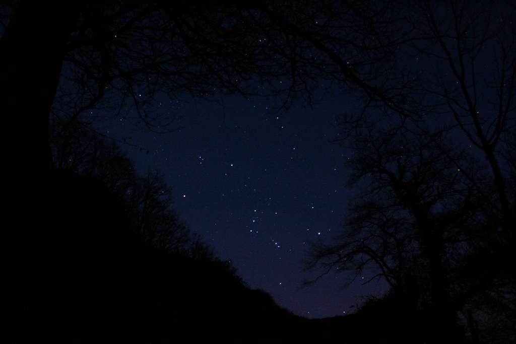 Orion en montagne béarnaise