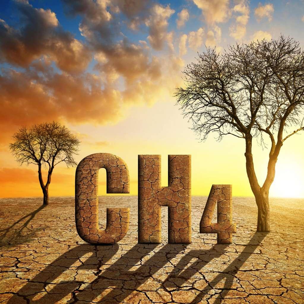À l'échelle du siècle, le méthane est 25 fois plus puissant que le gaz carbonique en potentiel de réchauffement global. © vencav, Adobe Stock