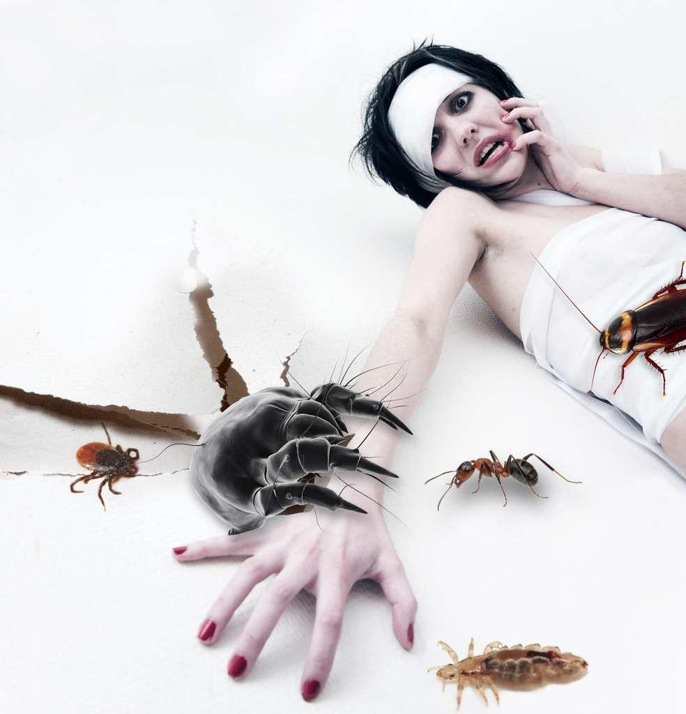 L'un des effets du delirium tremens est de provoquer des visions oniriques alors que le sujet est éveillé. On ignore pour quelle raison il s'agit souvent d'insectes rampants... © Cerveau & Psycho