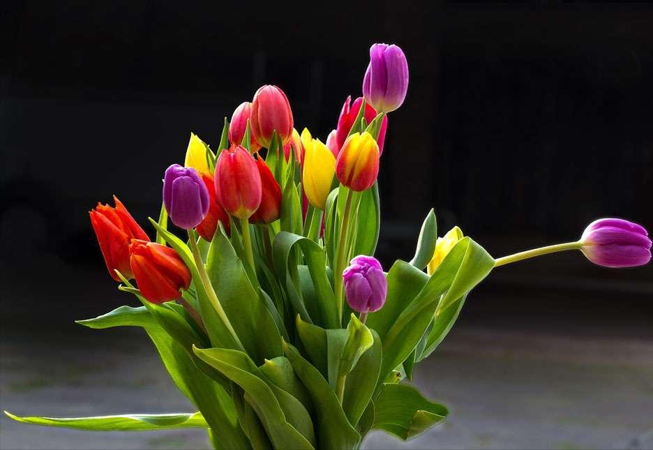 Bouquet de tulipes. © Josef17, Pixabay, Domaine Public