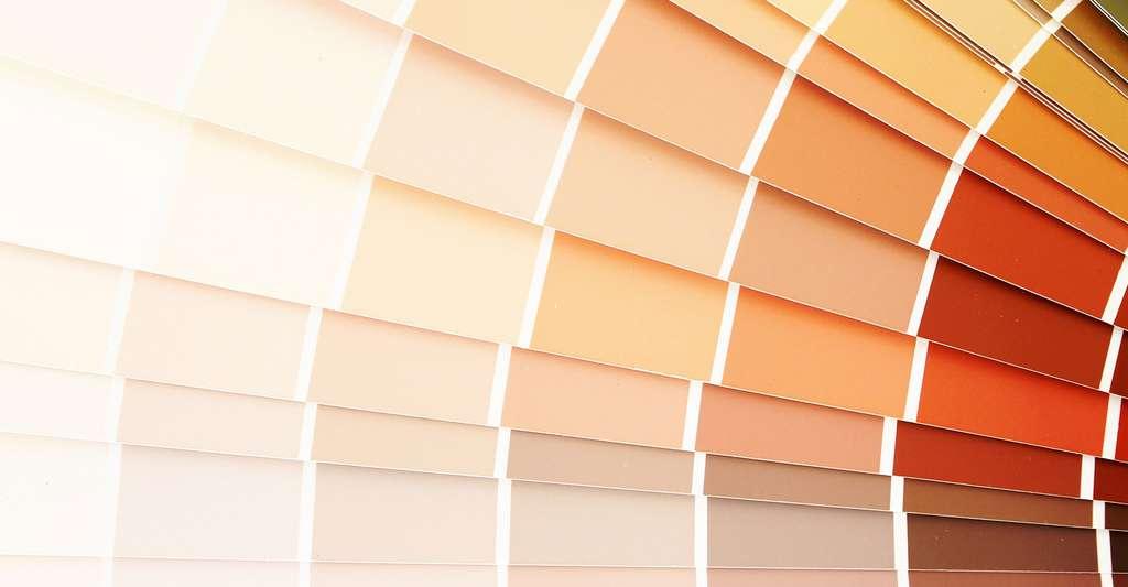 Différents tons de couleurs à choisir. Avant de peindre, mieux vaut bien préparer son mur. © Pare Mahakanok, Shutterstock