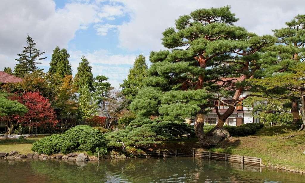Jardin Oyaku-en, Aizu Wakamatsu © Antoine - Tous droits réservés