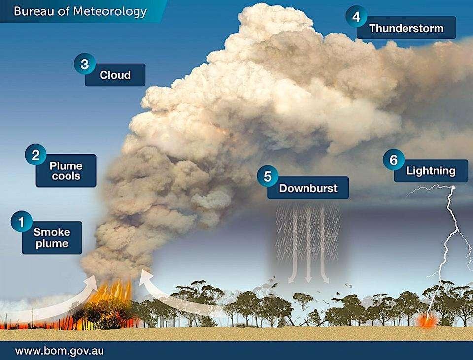 Un panache de fumée s'élève. Au fur et à mesure qu'il prend de l'altitude, sa température descend. La pression atmosphérique finit par causer la formation de nuages. Puis, l'instabilité de l'atmosphère provoque la naissance d'un orage (Pyrocumulonimbus). En contact avec l'air sec, la pluie du nuage s'évapore et refroidit, ce qui entraîne un déchaînement de pluie. Finalement, des éclairs apparaissent, suivis par de nouveaux départs de feux. © Australian Bureau of Meteorology