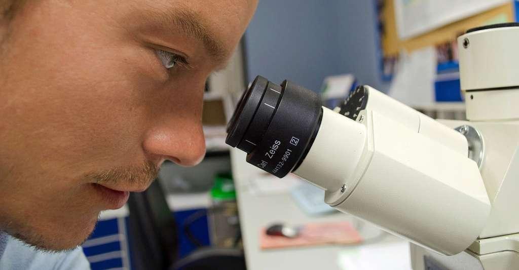 Ingénieurs de recherche. © PublicDomainPictures - Domaine public
