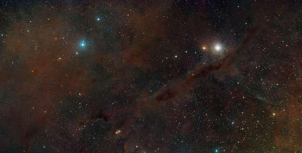 Le nuage moléculaire du Taureau se situe à 450 années-lumière de nous. © Digitized Sky Survey 2/Davide De Martin