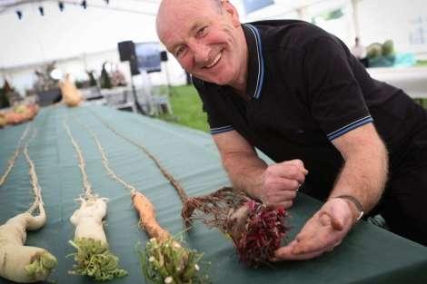 Joe Atherton a cultivé la plus longue carotte du monde. Il détient aussi les records de la plus longue betterave et du plus long radis. © Joe Atherton, Malvern's Giant Vegetables Show