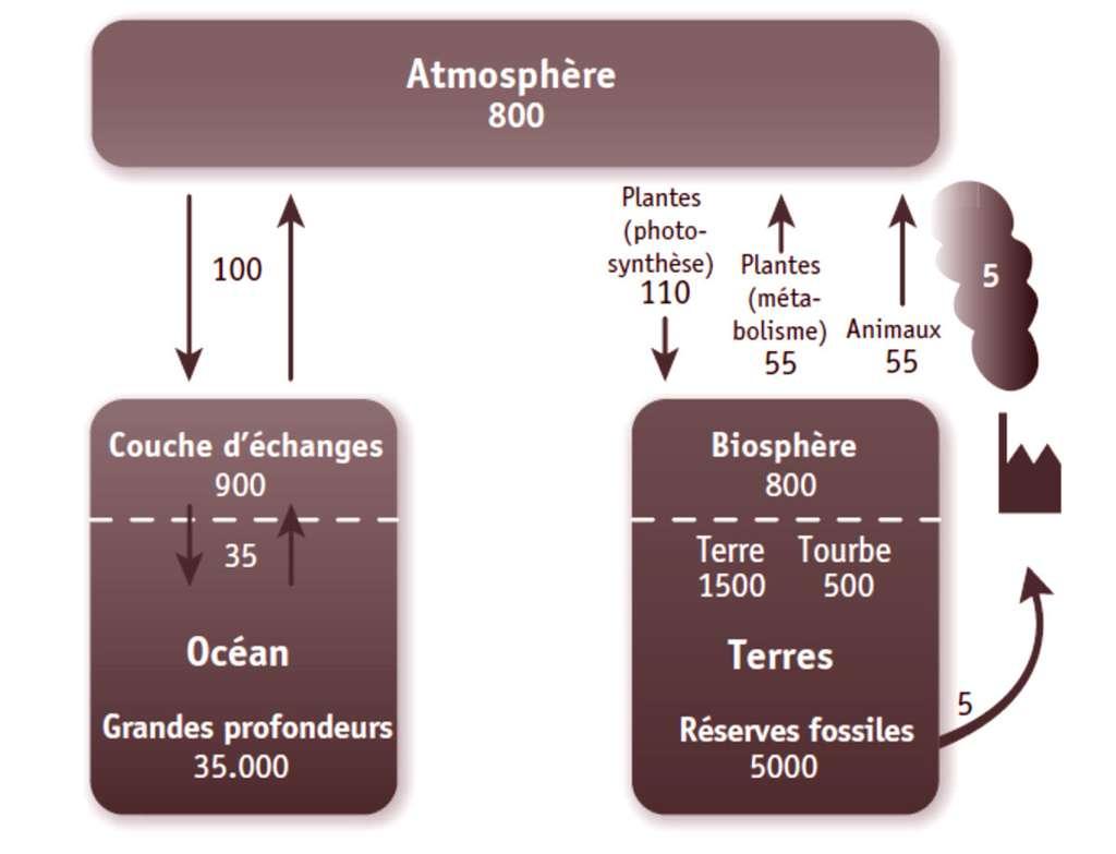 Réservoirs de carbone (sous forme de rectangles sans échelle, en 1012 kg) et flux de carbone (sous forme de flèches, en 1012 kg/an) impliqués dans le réchauffement climatique. © EDP Sciences