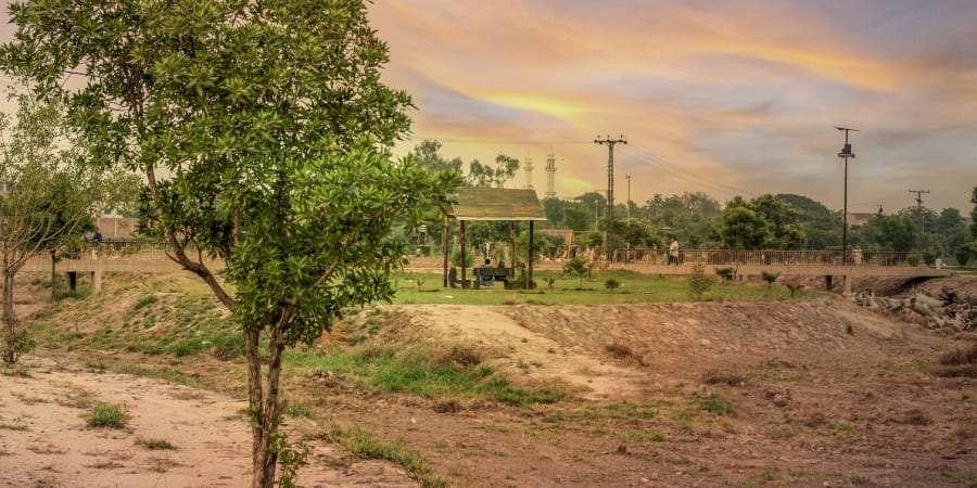 Dix milliards d'arbres seront plantés d'ici 2023. C'est l'ambitieux projet baptisé Ten Billion Trees Tsunami Programme, lancé en 2019 par le Premier ministre du Pakistan Imran Khan. © if you want some one then come and get some one, Getty Images
