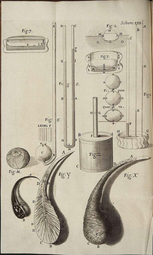 Illustration de larmes bataviques et de leur structure dans Micrographia, le sublime livre de science rédigé et illustré par Robert Hooke. © National Library of Wales