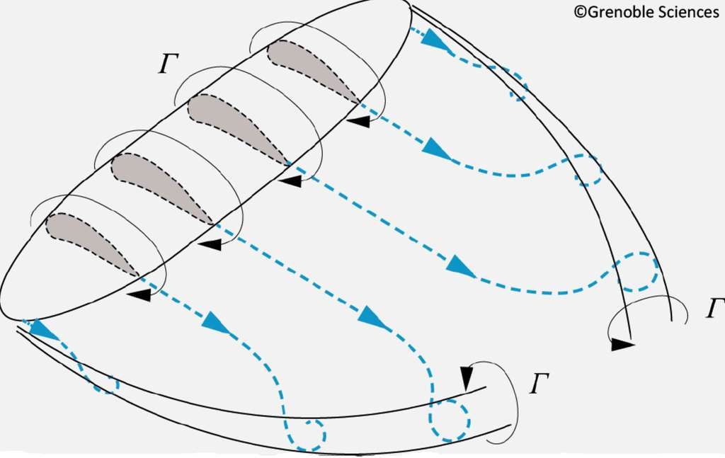 Allure schématique de l'écoulement d'air autour d'une aile d'envergure finie avec une circulation à la vitesse Γ, invariante le long du grand tourbillon comme des tourbillons marginaux aux extrémités de l'aile. Noter le sens du courant d'air vertical induit par les tourbillons marginaux : ascendant à l'extérieur, descendant à l'intérieur. © Grenoble Sciences