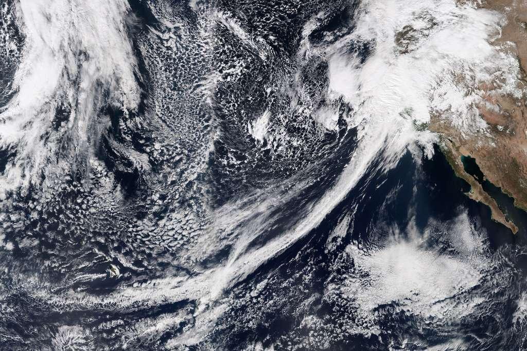 Une des rivières atmosphériques à l'origine de pluies diluviennes en Californie, en février 2017. © EarthObservatory