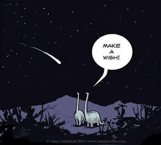 Le corps céleste qui a percuté la Terre il y a 66 millions d'années a causé la disparition de 75 % des formes de vie, dont la plupart des dinosaures non aviaires. © Mary Gutfleisch