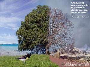 Une image pour rappeler que nous sommes tous responsables… Cliquez sur l'image pour la télécharger. © Futura-Sciences