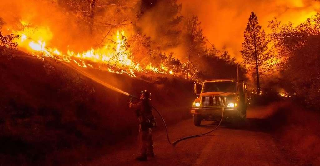 Les pompiers premiers acteurs arrivés sur les lieux du feu. © Skeeze - CCO