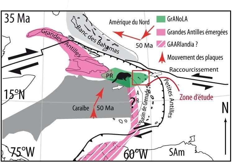 Est de la plaque Caraïbe à 35 millions d'années. GrANoLA, en vert, émergé à la faveur d'un épaississement crustal d'origine tectonique, fait la connexion entre les Grandes Antilles et le nord des Petites Antilles.
