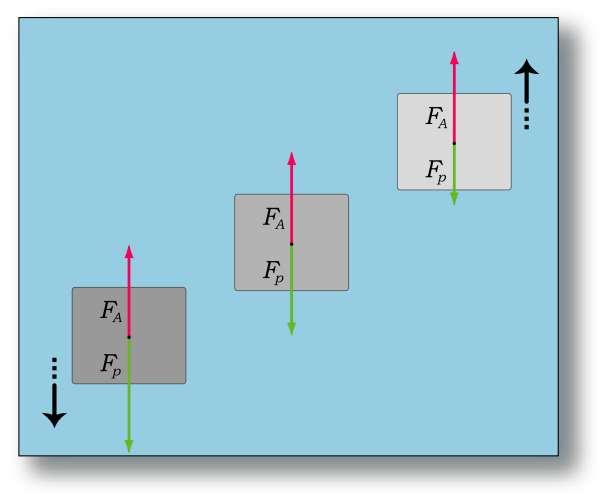 Schéma illustrant le principe d'Archimède. © Wikipédia, domaine public