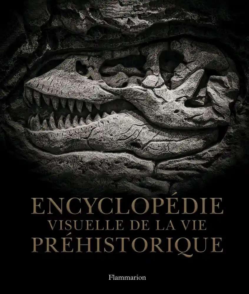 L'Encyclopédie visuelle de la vie préhistorique est un beau cadeau à glisser au pied du sapin. © Flammarion