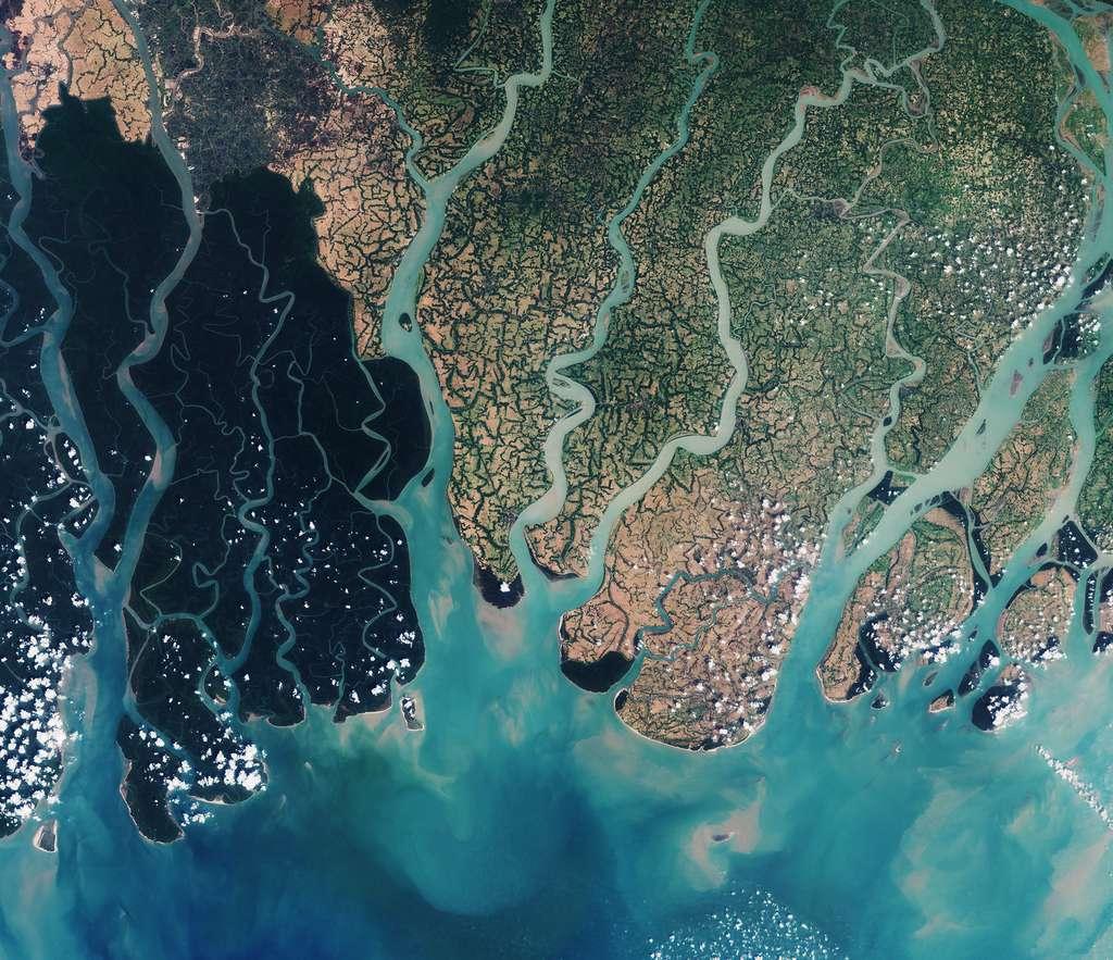 La forêt de mangrove des Sundarbans se déploie à cheval entre l'Inde et le Bangladesh. C'est la région du delta du Gange. © Contient des données modifiées de Copernicus Sentinel (2016), traitées par ESA, CC By-SA 3.0 IGO
