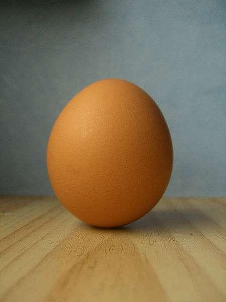 Comment observer l'énergie cinétique de façon ludique ? Avec un œuf ! © Kacper Kangel Aniolek, CC by-sa 3.0