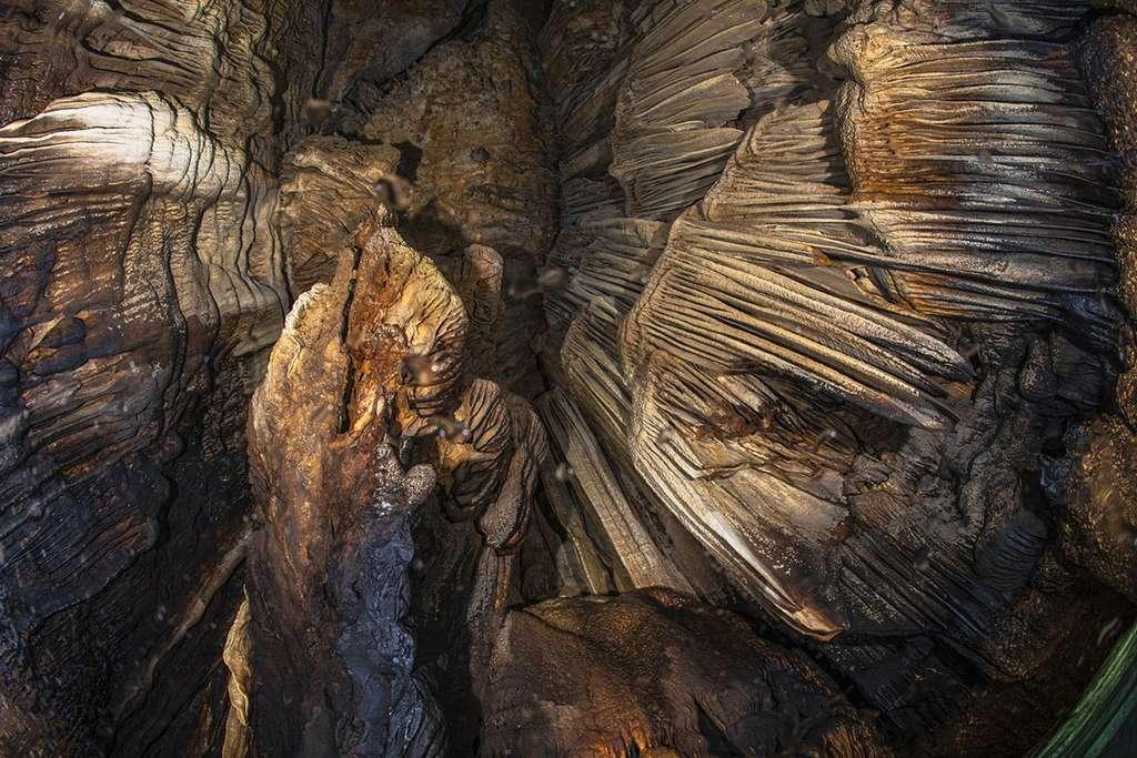 Vue du plafond de la grotte avec les impressionnantes stalactites. © Gabriel Barathieu, tous droits réservés
