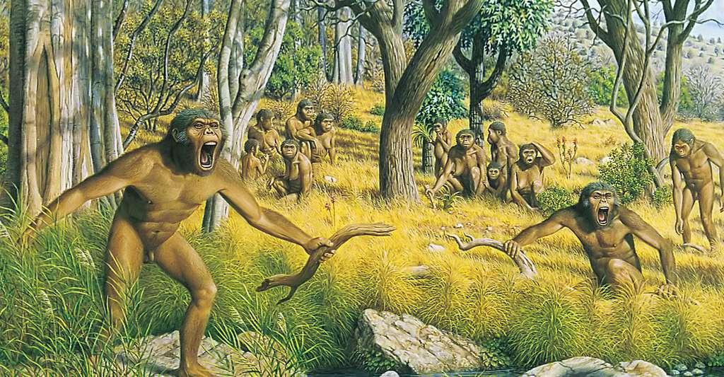 Anatomie comparée de l'Homme et du singe. Ici, une représentation d'un groupe d'australopithèques. © Matheusvieeira, Wikimedia Commons, DP