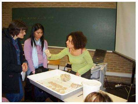 Un doctorant de l'Université de Liège (Belgique) explique les caractéristiques anatomiques et fonctionnelles d'un cerveau provenant d'une autopsie. Semaine du Cerveau 2006. Source : J. Schoenen.