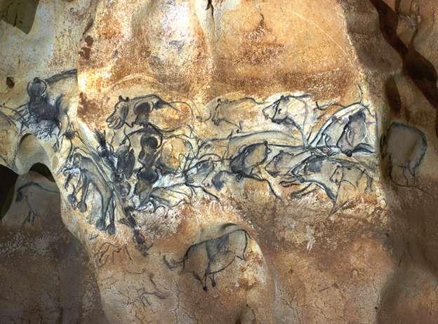 Cette photographie a été prise dans la salle du fond de la grotte Chauvet, sur la paroi de gauche. Des lions chassent des bisons. Il faut noter la notion de mouvement induite par les différentes têtes de félin si l'image est lue de droite à gauche. © Jean Clottes, DR