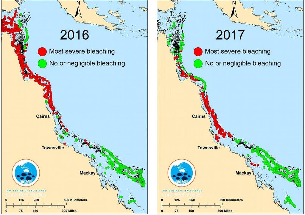 Les deux-tiers de la Grande Barrière de Corail ont été touchés lors des épisodes de blanchiment de 2016 et 2017. © ARC Centre of Excellence for Coral Reef Studies