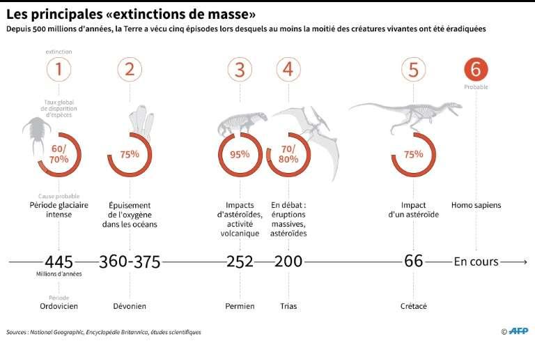 Les principales extinctions de masse depuis l'apparition de la vie sur Terre. © Alain Bommenel, AFP