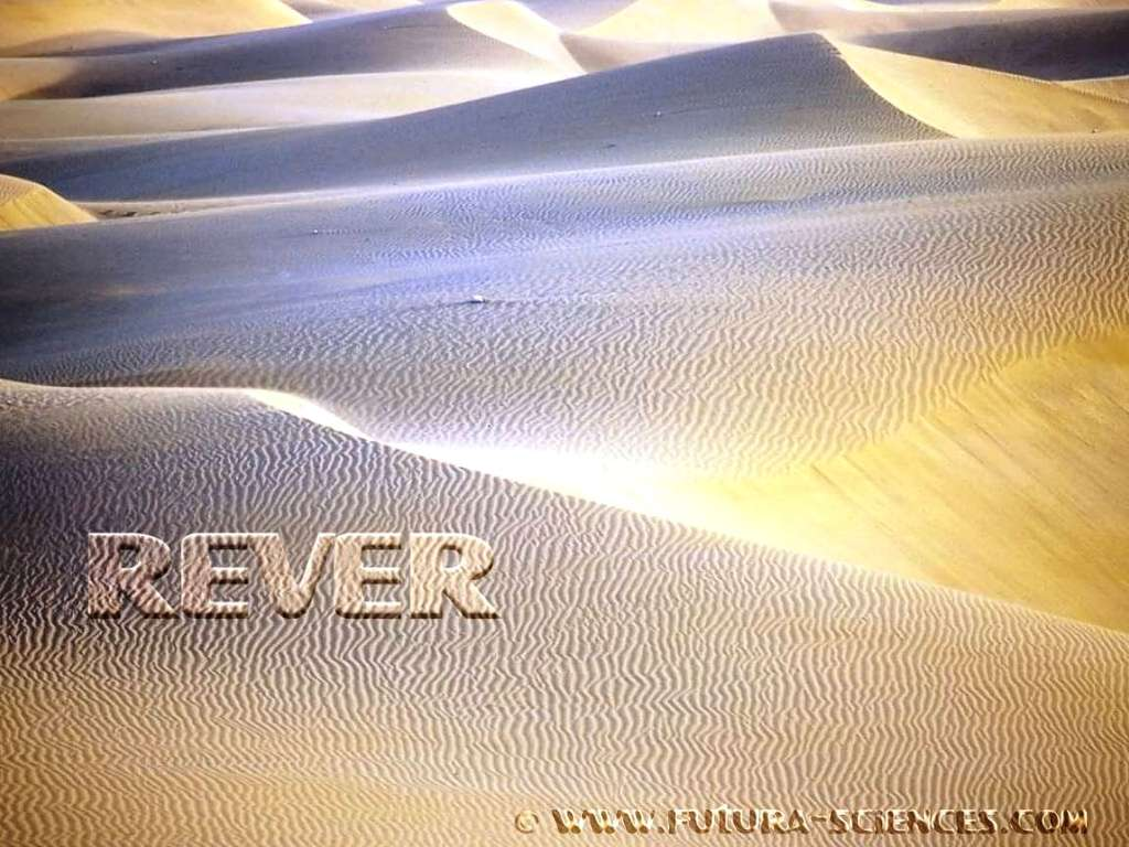 Dunes en Namibie