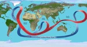 Cliquer pour agrandir. Schéma de la circulation thermohaline mondiale. Le Gulf Stream est le courant chaud de l'Atlantique nord. Il se refroidit et se charge en sel au niveau de la calotte polaire puis plonge. L'ensemble constitue un tapis roulant planétaire qui distribue la chaleur captée par les océans. © Nasa / JPL