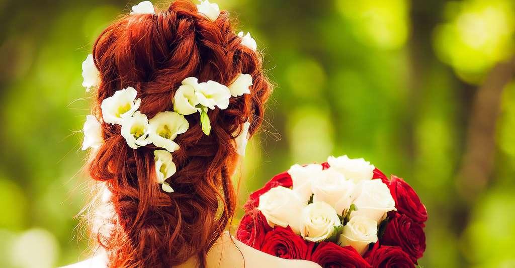 Chevelure féminine. © Melancholiaphotography, Pixabay, DP