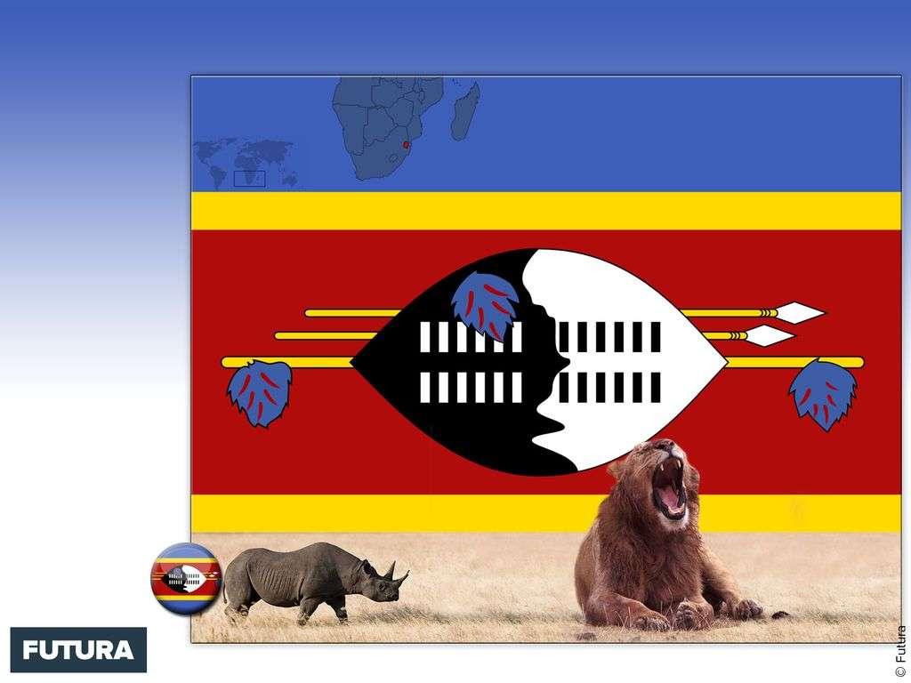 Drapeau : Swaziland