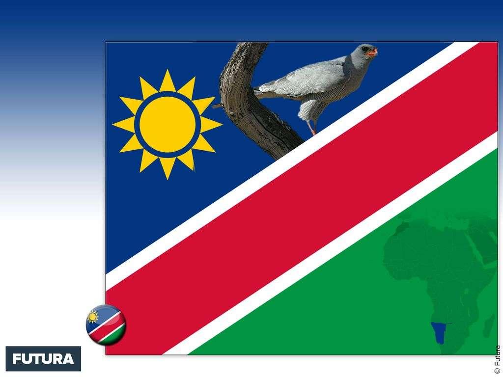 Drapeau : Namibie