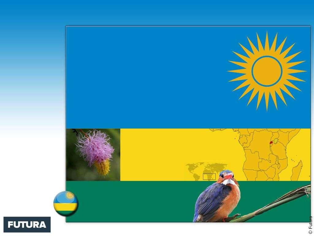 Drapeau : Rwanda