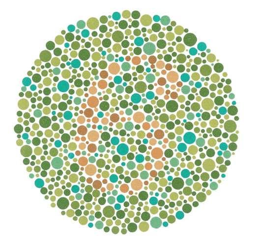 Gros plan du test afin de détecter le daltonisme : le chiffre 6 est visible en rouge. © Domaine public, Wikimedia Commons