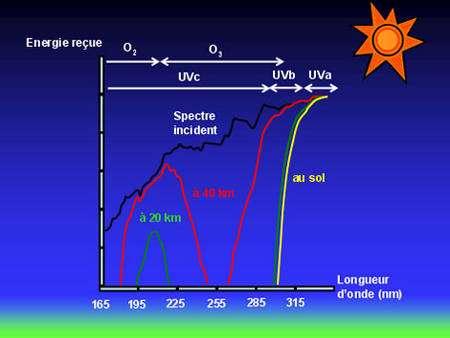Figure 8 : Spectre solaire incident et absorption de celui-ci en fonction de l'altitude. Au niveau du sol, le rayonnement ultra violet a quasiment disparu. Seuls restent les UVa et un peu d'UVb pour le bronzage (© J. Savarino).