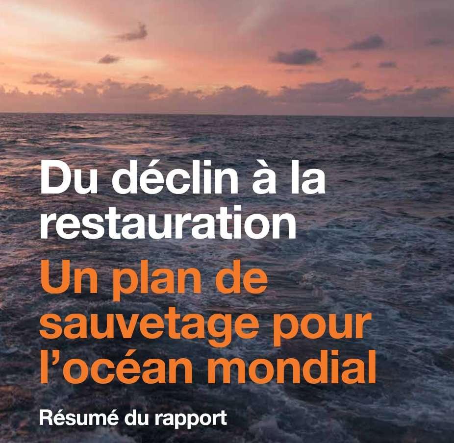 Le rapport qui donne des pistes pour le « sauvetage » de l'océan mondial. © Commission Océan global