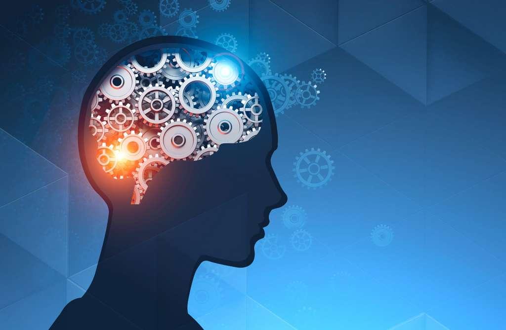 La théorie du double processus permet de prédire des phénomènes mais ce qu'elle suppose quant à la réalité de notre cognition est encore très discuté dans la communauté des sciences cognitives. © denisismagilov, Adobe Stock