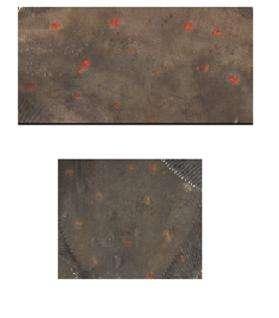 L'analyse précise de la couleur des taches de carrelets permet de déterminer leur qualité En haut : poisson de classe E En bas : poisson de classe B (Crédits : université de La Rochelle)
