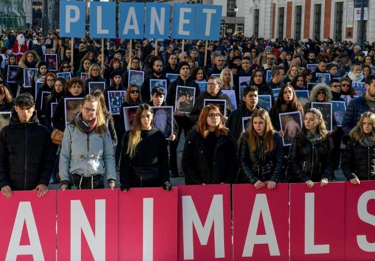 Manifestation contre le réchauffement climatique lors de la COP25, le 7 décembre 2019 à Madrid, en Espagne. © Cristina Quicler, AFP, Archives