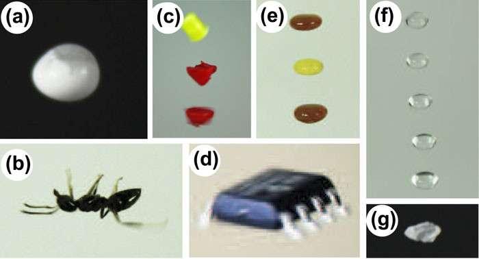 Quelques exemples d'objets que les chercheurs de l'université de Bristol sont parvenus à faire léviter : 40 μL d'une solution d'isopropanol et de dioxyde d'étain (a), une fourmi (b), un fragment d'acide polylactique de 2 mm de large (c), un transistor à effet de champ (d), du ketchup et de la moutarde (e), de l'eau (f) et du sucre (g). © Asier Marzo, université de Bristol