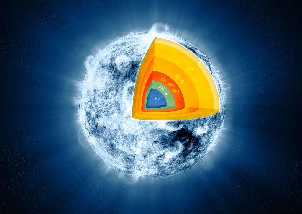 L'intérieur d'une étoile au moins dix fois plus massive que le Soleil se présente comme un oignon. Produits des réactions thermonucléaires successives à des températures qui finissent par dépasser le milliard de degrés, une série de noyaux sont synthétisés à partir de l'hydrogène et de l'hélium pour l'essentiel. © Nasa, JPL-Caltech, CXC, SAO
