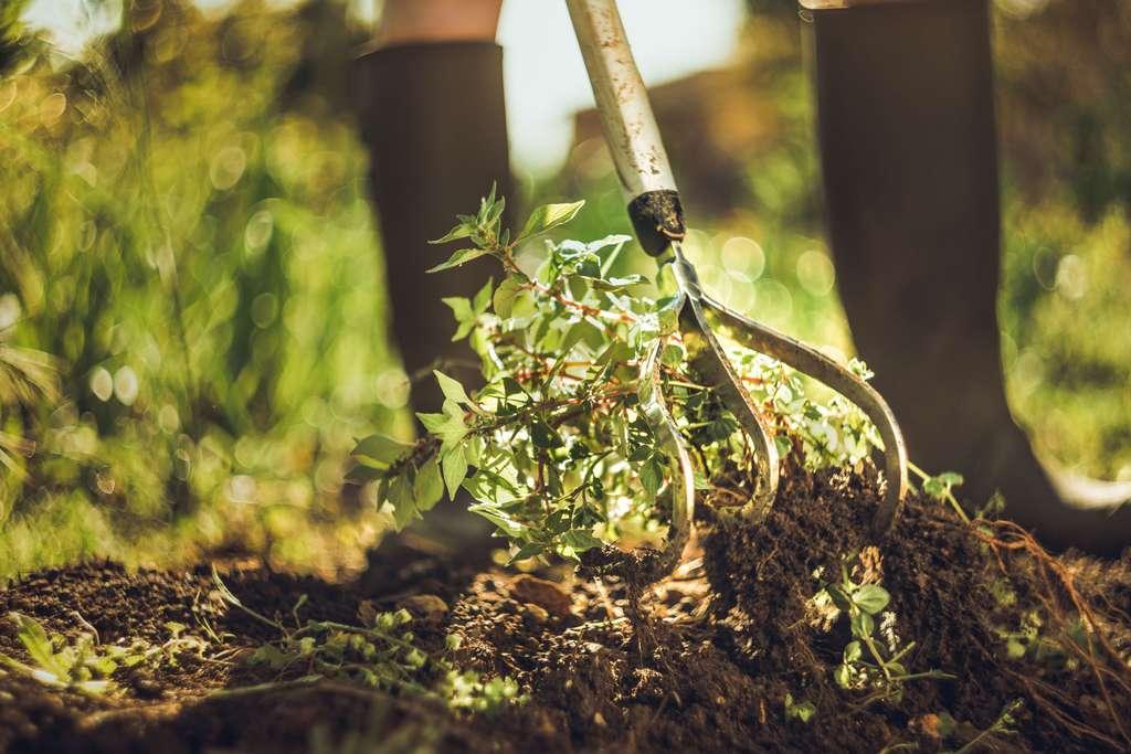 Le jardinier en CESU (Chèque emploi service universel) est intéressant pour les petits travaux d'entretien : débroussaillage, désherbage, tonte de la pelouse… Il permet aux particuliers de se faire rembourser 50 % du montant en s'épargnant des formalités administratives. © Fiskars