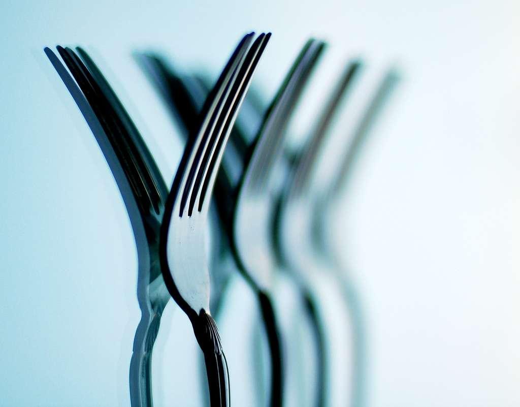 La monotonie des repas entraîne spontanément une réduction des portions, et donc du nombre de calories ingérées. © bitzcelt, Flickr CC by nc-nd 3.0