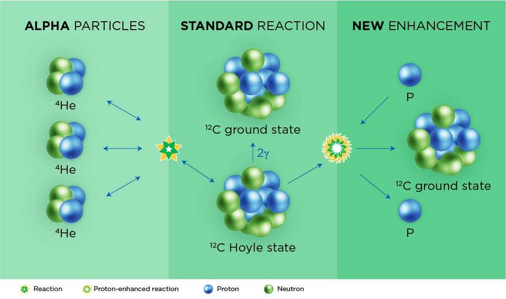 Au cours du processus triple alpha, les étoiles fusionnent trois noyaux d'hélium — sur le dessin de gauche — pour former un atome de carbone portant un surplus d'énergie — état de Hoyle au centre. Celui-ci peut à nouveau se diviser en trois particules alpha ou passer dans son état fondamental en libérant des rayons gamma. Au cœur des supernovae, des protons supplémentaires peuvent aider à stabiliser le carbone — dessin de droite. © Facility for Rare Isotope Beams