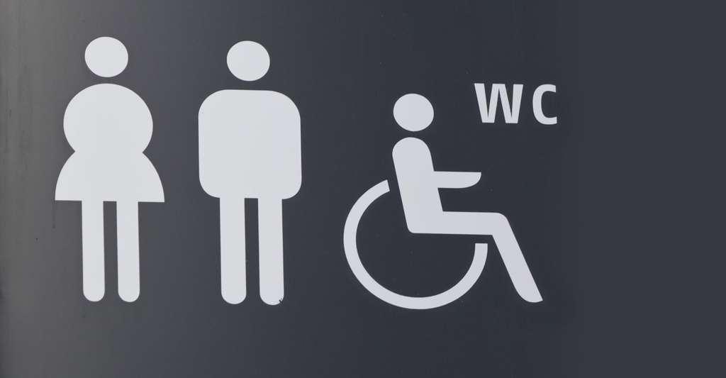 Il existe plusieurs traitements de l'incontinence, une affection handicapante au quotidien. © Jarp2, Shutterstock
