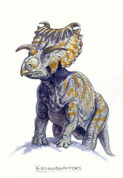 Kosmoceratops richardsoni possède, en plus de son cousin, une corne de chaque côté de la mâchoire et 10 cornes sur le haut de la collerette. © Mark Hallett