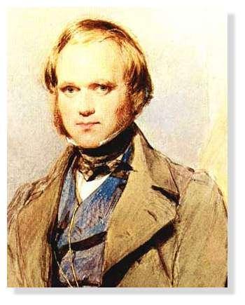 Darwin jeune